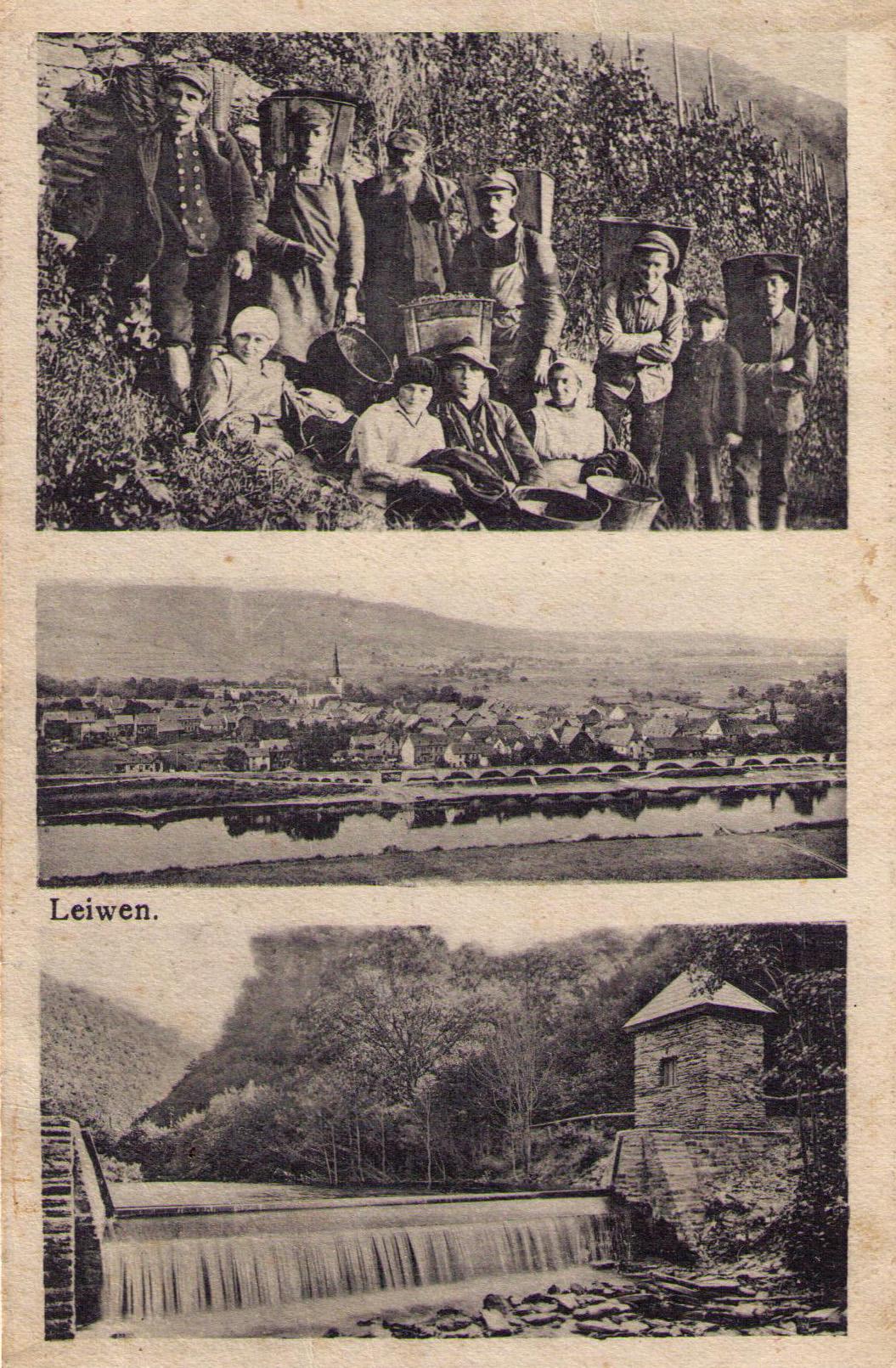 PostkarteLeiwen
