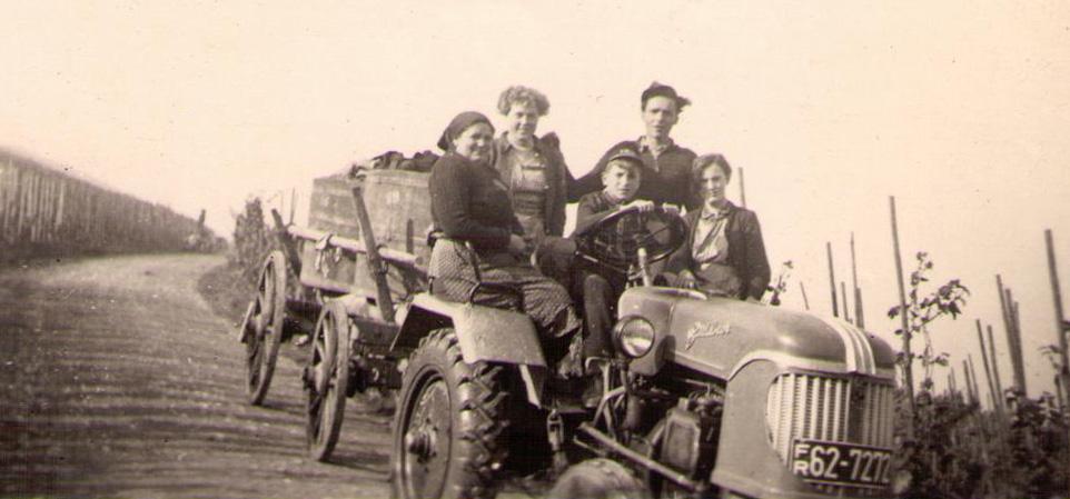 Traubenwagen